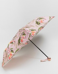 Ted Baker Compact Umbrella in Peach Blossom Print - Multi