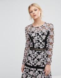 True Decadence Petite Allover Floral Lace Skater Dress - Multi
