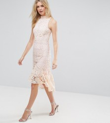 True Decadence Tall Allover High Neck Premium Lace Midi Dress - Pink