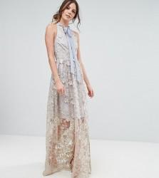 True Decadence Tall Embroidered Halter Neck Maxi Dress - Multi