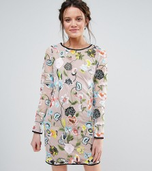 True Decadence Tall Embroidered Long Sleeve Dress - Multi