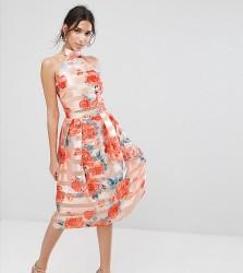 True Violet Midi Skirt in Stripe Organza - Orange