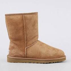 Ugg® Australia Støvler - Classic Short