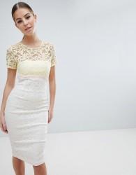 Vesper 2 in 1 Lace Pencil Dress - Multi