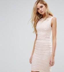 Vesper Lace Pencil Dress with Scallop Lace Bodice - Multi