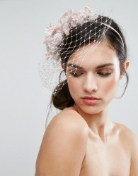 Vixen Fascinator Headband With Veil - Pink