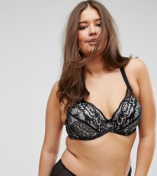 Yours Rosa High Apex Lace Bra - Black