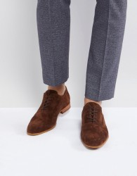 Zign Suede Lace Up Shoes In Brown - Brown