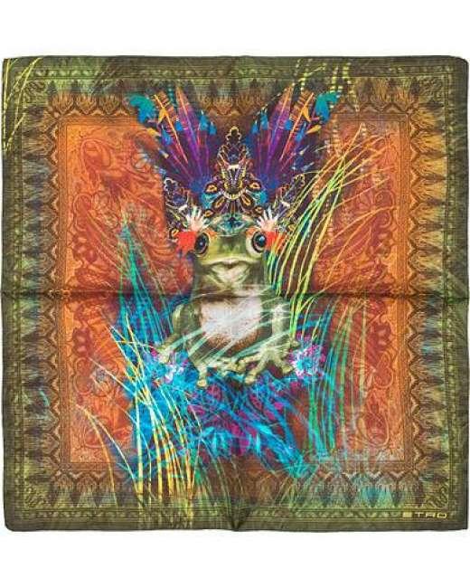Priser på Etro Printed Frog Pocket Square Green